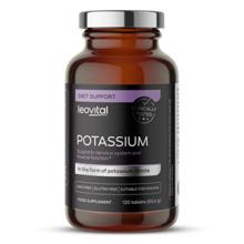 Potassium, 120 Tabletten