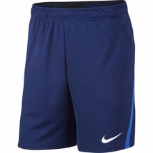 Nike Dri-Fit 5.0. Shorts, Blue Void/Game Royal White