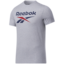 Reebok Graphic Series Big Logo SS Shirt, Medium Grey/Navy