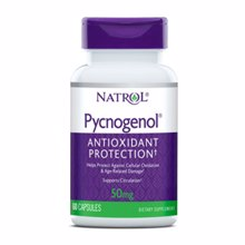 Pycnogenol, 60 Kapseln