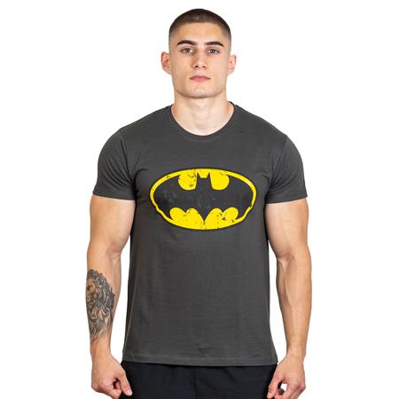 Hero Core T-shirt, Batman Logo Vintage