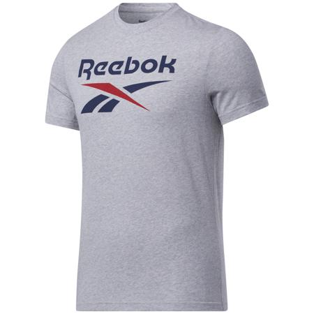 Reebok Graphic Series Big Logo SS Shirt, Medium Grey/Navy